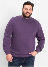 Mikina Regular Fit, bpc bonprix collection