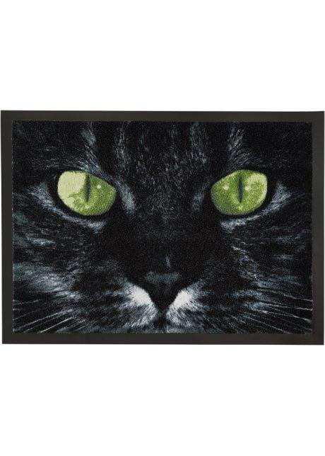 černá dům žena kočička russell tovey gay sex